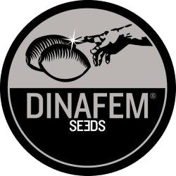 DINAFEM - BLUE WIDOW FEMMINIZZATA - 5 SEMI