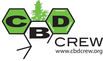 - NEW - CBD CREW - CBD SWEET AND SOUR WIDOW REGOLARE - 5 SEMI